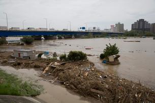 台風で増水した多摩川の写真素材 [FYI03306013]