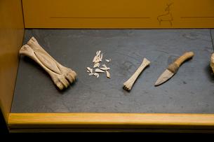 槍の先端を作った骨と火打石のナイフの写真素材 [FYI03306400]
