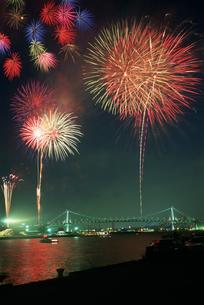 東京湾大華火祭 豊海岸壁より望むの写真素材 [FYI03307029]