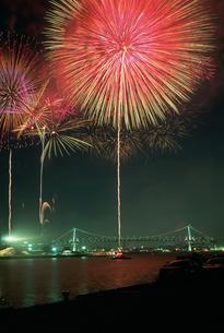 東京湾大華火祭 豊海岸壁より望むの写真素材 [FYI03307033]