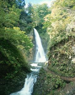暗門の滝 第1の滝の写真素材 [FYI03307123]