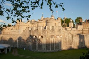 ロンドン塔の北西側の外壁と木の葉の写真素材 [FYI03309205]