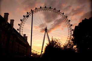 ロンドンアイのシルエットと夕焼けの写真素材 [FYI03309282]