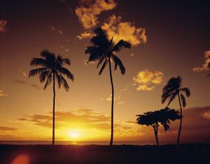 夕陽とカアナパリビーチの写真素材 [FYI03309592]