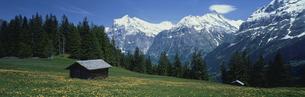 小屋とヴェッターホルン  スイスの写真素材 [FYI03310498]