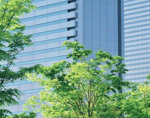 OBP高層ビル群の写真素材 [FYI03310633]