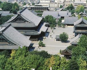 東本願寺大伽藍の写真素材 [FYI03311891]