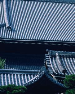 東本願寺の大伽藍の写真素材 [FYI03311960]