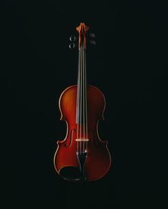 バイオリンの写真素材 [FYI03312497]