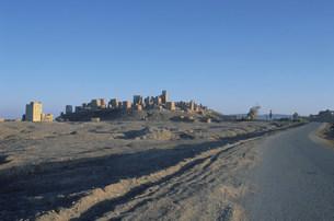 アルムカツラの城壁の写真素材 [FYI03312671]