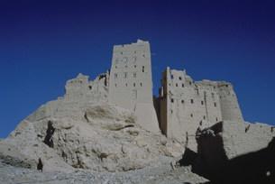 アルムカツラの城壁の写真素材 [FYI03312672]