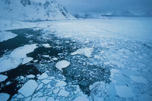 クルスク周辺 グリーンランドの写真素材 [FYI03312922]