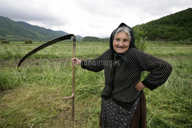 牧草刈りのお婆さんの写真素材 [FYI03312945]