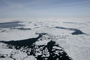 セントローレンス湾の流氷の写真素材 [FYI03313226]