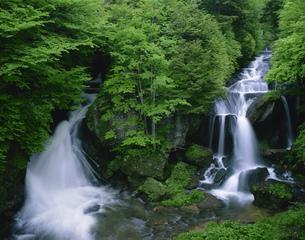 竜頭滝の写真素材 [FYI03313848]
