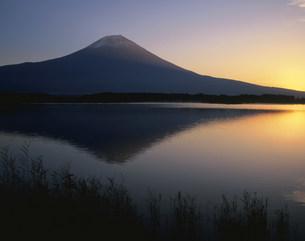 田貫湖と富士山の朝の写真素材 [FYI03313951]