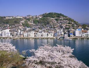 桜の尾道水道と尾道市街の写真素材 [FYI03314428]