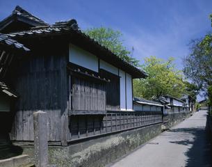 武家屋敷 萩市      4月の写真素材 [FYI03314655]