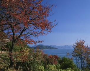 秋の瀬戸内 竹原の写真素材 [FYI03314686]