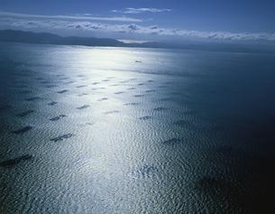 のり網の光る海と淡路島 播磨灘 兵庫県の写真素材 [FYI03314787]