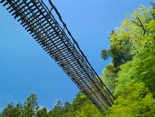 奥祖谷かずら橋の写真素材 [FYI03314919]