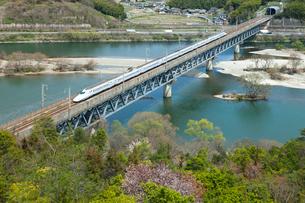 九州山陽新幹線と桜の高梁川の写真素材 [FYI03315224]