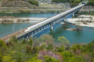 山陽新幹線と桜の高梁川の写真素材 [FYI03315226]