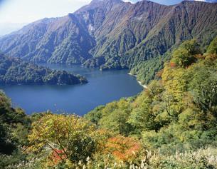 田子倉湖の秋の写真素材 [FYI03315733]
