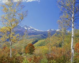 乗鞍岳の秋の写真素材 [FYI03316388]