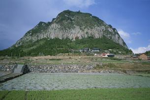 山房山 済州島 韓国の写真素材 [FYI03316595]