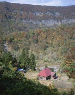 津南町 里山風景の写真素材 [FYI03316676]
