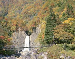 苗名の滝 長野新潟県境の写真素材 [FYI03316683]