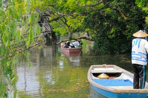 新緑の柳川の写真素材 [FYI03317204]