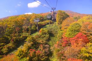 妙高山の紅葉と赤倉スカイケーブルの写真素材 [FYI03317392]