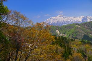 新緑の山里から妙高山の写真素材 [FYI03317686]