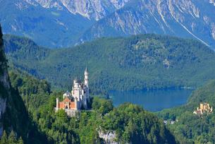 ノイシュヴァンシュタイン城とアルプ湖の写真素材 [FYI03317733]