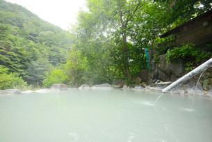 林間の露天風呂の写真素材 [FYI03317782]