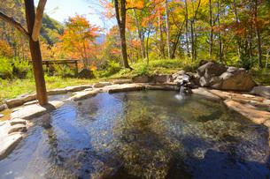 紅葉の林の中の露天風呂の写真素材 [FYI03317869]