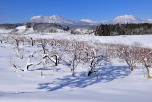 北信濃の雪山の写真素材 [FYI03317966]