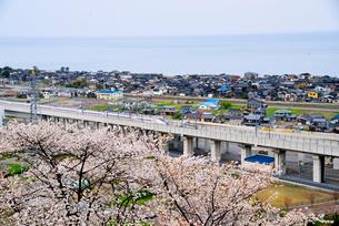 日本海と北陸新幹線の写真素材 [FYI03317975]