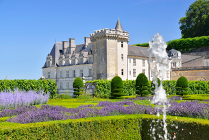 ヴィランドリー城庭園と城館の写真素材 [FYI03318293]