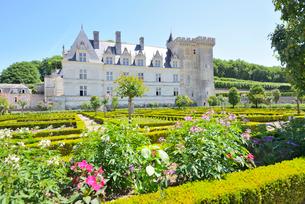 ヴィランドリー城庭園と城館の写真素材 [FYI03318294]