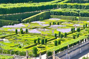 ヴィランドリー城庭園の写真素材 [FYI03318295]