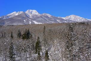 妙高山麓と妙高山の写真素材 [FYI03318716]