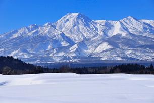 雪原と妙高山の写真素材 [FYI03318719]