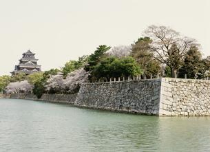 広島城の写真素材 [FYI03319519]