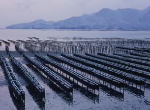 雪のかき座 瀬戸内海の写真素材 [FYI03319597]