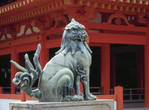 厳島神社 本社祓殿前の狛犬の写真素材 [FYI03319631]