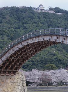 錦帯橋の写真素材 [FYI03319638]