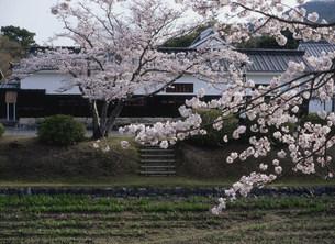 香川家長屋門の写真素材 [FYI03319647]